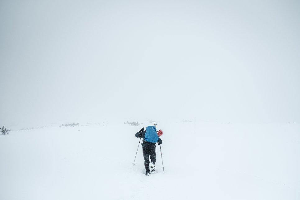 Jak nás porazilo počasí